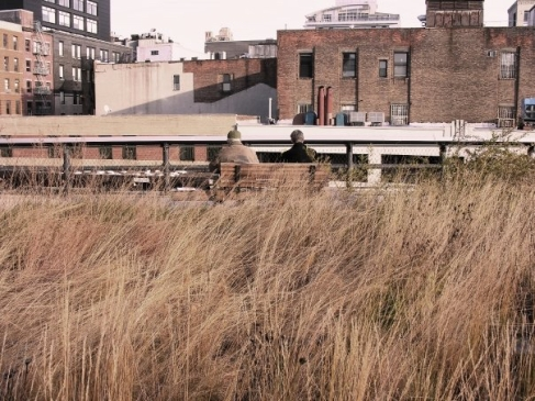 The High Line in New York - November 2009