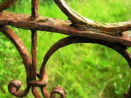 Rusty gate in Ireland - July 2009
